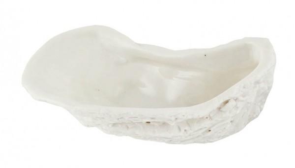 Kaheku Dekoschale Orsin Auster weiss 16,5x10x5h