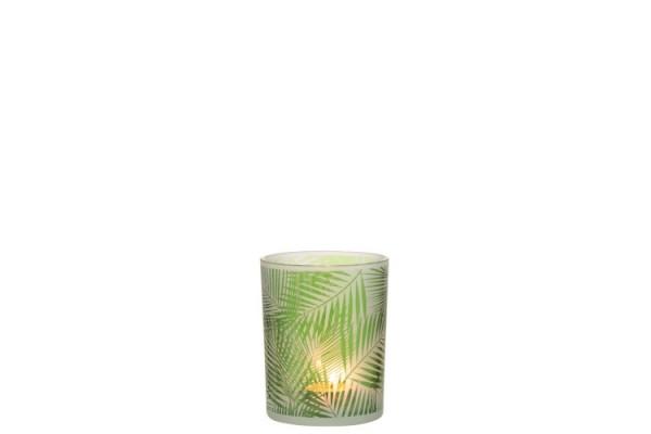 JOLIPA / J-LINE WINDLICHT TROPISCH AUS GLAS