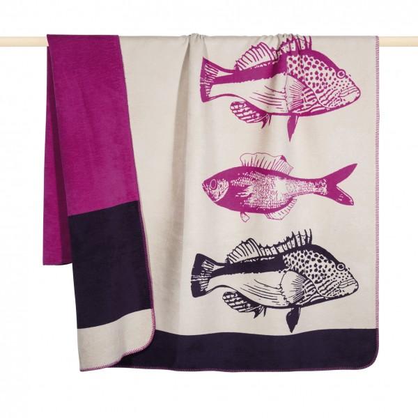 Fisch Decke fuchsia